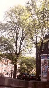 vacances-amsterdam-002-e1377700214484-168x300